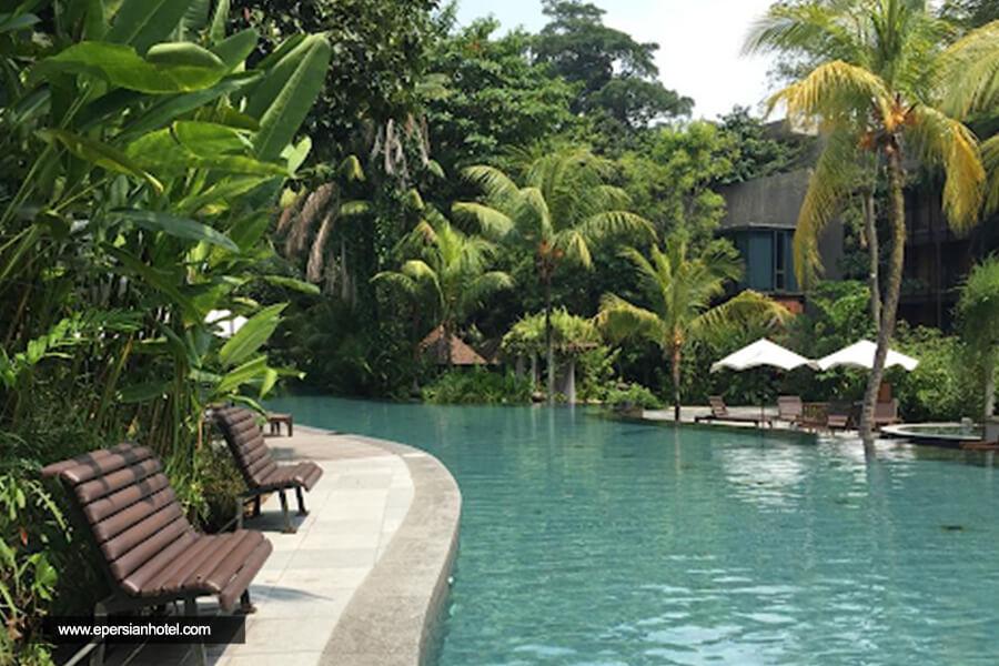 هتل سیلوسو بیچ ریزورت جزیره سنتوسا استخر