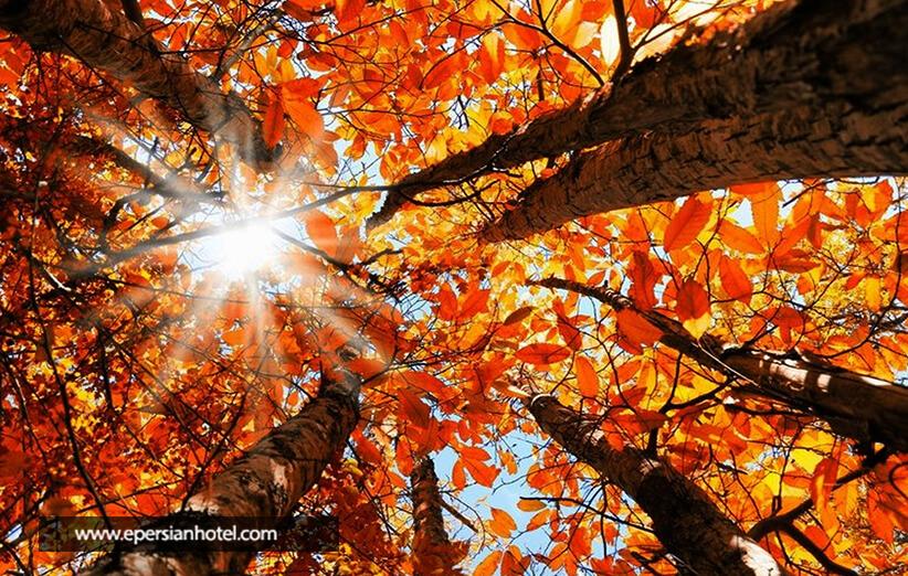فضای رمانتیک پاییزی درکه
